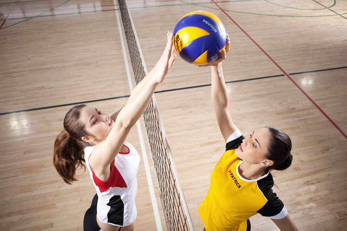 Всем любителям волейбола